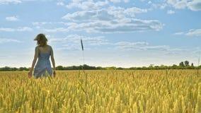 Femme marchant loin dans le domaine d'agriculture seul concept banque de vidéos
