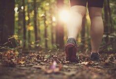 Femme marchant par la forêt image libre de droits