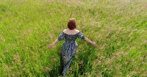 Femme marchant sur le pré d'été, vue supérieure clips vidéos