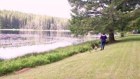 Femme marchant un chien le long du bord de lakeking un chien le long du bord d'un lac banque de vidéos