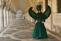Femme masquée costumée par oiseau Image libre de droits