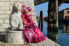 Femme masquée costumée par rose Image stock