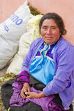 Femme maya dans la jupe et le chemisier traditionnels photos libres de droits