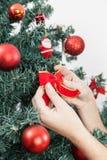 Femme mettant un arc dans l'arbre de Noël Photographie stock libre de droits