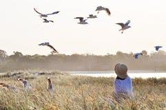 Femme molle rêveuse dans le domaine d'herbe et voler d'oiseaux images stock