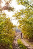 Femme montant un vélo de montagne Photographie stock