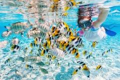 Femme naviguant au schnorchel avec les poissons tropicaux Photographie stock libre de droits