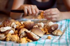 Femme nettoyant les champignons sauvages dans la cuisine, le porcini et le chante photos stock
