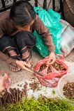 Femme non identifiée vendant des épices au marché asiatique traditionnel laos Photographie stock libre de droits