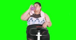 Femme obèse faisant la cardio- séance d'entraînement tout en buvant clips vidéos