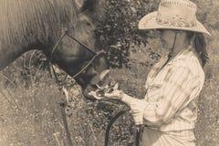 Femme occidentale prenant soin de cheval sur le pré Photo stock