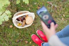 Femme photographiant des champignons par le smartphone image stock