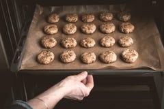 Femme posant avec des biscuits faisant cuire au four dans le four Photo libre de droits