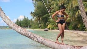 Femme posant sur un palmier banque de vidéos
