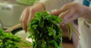 Femme préparant la salade dans la cuisine Fille attirante tout en faisant la salade dans sa cuisine à la maison banque de vidéos