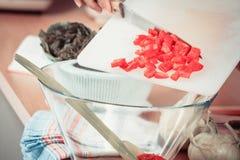 Femme préparant la salade de légumes coupant en tranches le poivron rouge Photo stock