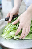 Femme praparing une salade verte photographie stock libre de droits