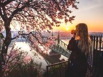 Femme prenant à photo le paysage urbain et le pont de liberté au-dessus de Danube de la terrasse de la colline de Gellert à Budap images stock