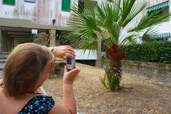 Femme prenant la photo avec l'appareil-photo Images stock