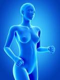 Femme pulsante Photo libre de droits