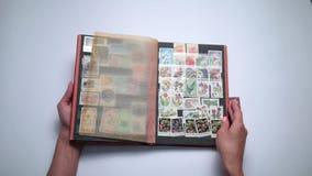 Femme regardant par la vieille collection de timbres clips vidéos