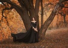 Femme renversante incroyable Photographie stock