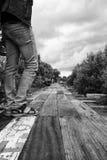 Femme restant sur le chemin en bois. Photo libre de droits