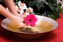 Femme retenant une fleur et lavant des mains image stock