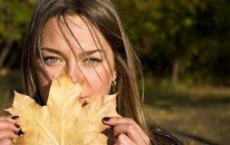 Femme retenant une lame d'érable Photographie stock