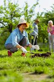 Femme retirée portant le fonctionnement gentil de chapeau d'été dans le jardin image stock