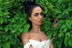 Femme séduisante avec la coiffure luxueuse dans des feuilles vertes image libre de droits