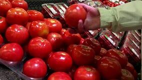 Femme sélectionnant des tomates de champ de épicerie clips vidéos