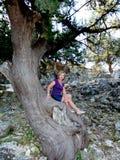 Femme s'asseyant sur l'arbre Photo stock