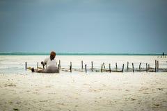 Femme s'asseyant sur le sable sur le rivage de Zanzibar recueillant le varech images libres de droits