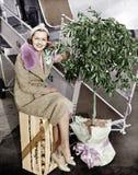 Femme s'asseyant sur une caisse d'oranges à côté d'un arbre d'avion et d'agrume (toutes les personnes représentées ne sont plus l photos stock