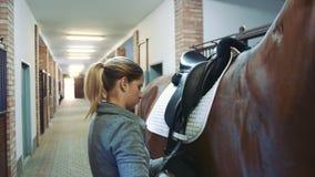 Femme s'chargeant de la selle sur le cheval dans l'écurie banque de vidéos
