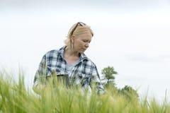 Femme saisissant une tablette regardant vers le bas sur le champ de blé photo stock