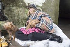 Femme sans abri mûre priant dehors avec deux chiens photographie stock