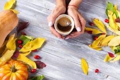 Femme se tenant en café chaud de mains Photographie stock