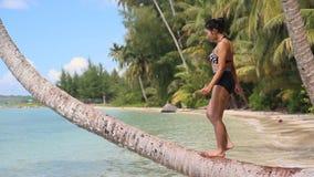 Femme se tenant sur un palmier banque de vidéos