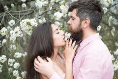 Femme sensuelle d'étreinte barbue d'homme Couples dans l'amour parmi les arbres de floraison Soins de la peau et fraîcheur Rose r Photo libre de droits