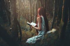 Femme seul lisant dans les bois photographie stock libre de droits