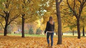 Femme seule marchant en couleur d'or d'Autumn Park With Fallen Leaves banque de vidéos