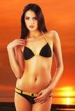 Femme sexy attirante de brune dans le maillot de bain image stock