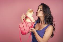 Femme sexy Chien de chiwawa de baiser de propriétaire de femme dans le sac rose Images stock