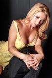 Femme sexy dans la lingerie Image libre de droits