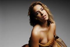 Femme sexy en soie images stock