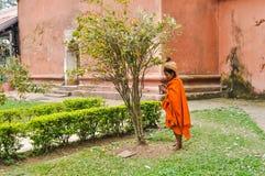 Femme sous l'arbre dans Assam Images stock