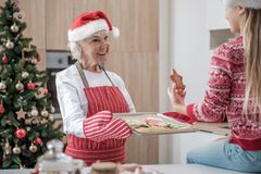 Femme supérieure aimable traitant la petite-fille par des biscuits de Noël Photographie stock libre de droits