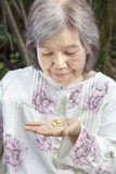 Femme supérieure asiatique regardant des pilules Photos stock